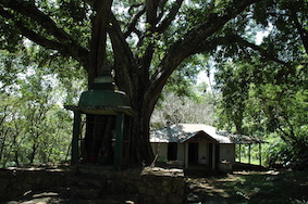 The old Hindu temple