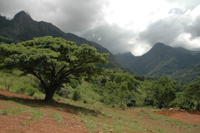 Only the sky is the limit